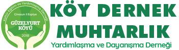 Köy Dernek Muhtarlık sitesi web tasarımı